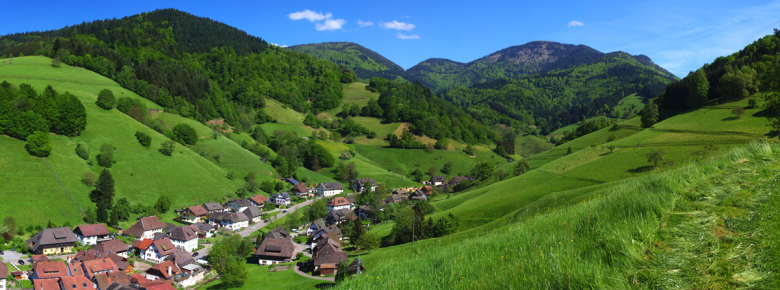 Münstertal Belchenpanorama2